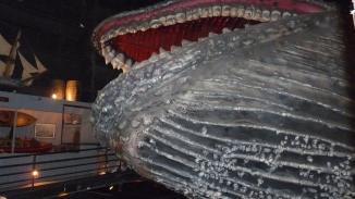 Huge whale sculpture