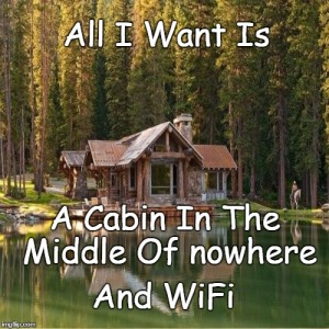 A great solution to traditional tent camping is to rent a vacation home. cottage or cabin (hopefully in the woods, on a lake, with a covered front porch with jacuzzi hot tub, fireplace, oh and Wifi!