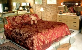 Riverfront Cabin with Private Hot Tub-Saugatuck-Michigan3