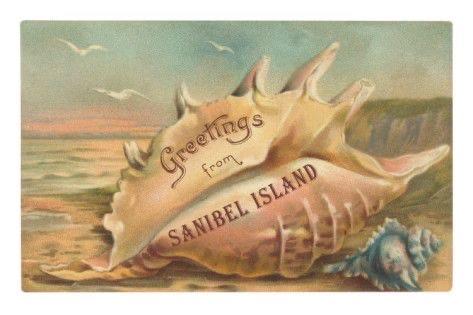 Sanibel Island, FL vintage postcard